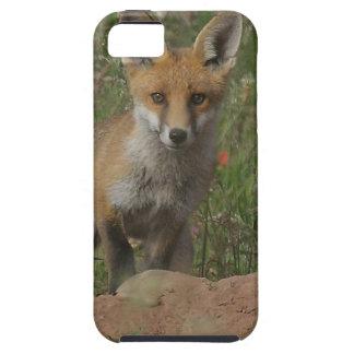 Roter Fox iPhone 5 Etui