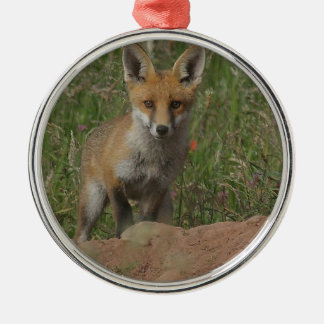 Roter Fox Rundes Silberfarbenes Ornament