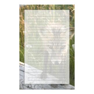 Roter Fox, Vulpes fulva auf Klotz, Wildblumen, Briefpapier