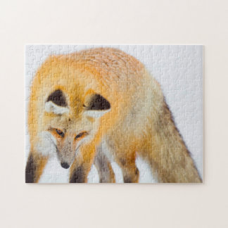 Roter Fox Wyoming Puzzle