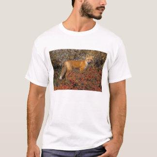 roter Fuchs, Vulpes Vulpes, in den Herbstfarben T-Shirt