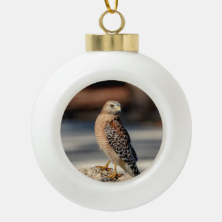 Roter geschulterter Falke auf einem Felsen Keramik Kugel-Ornament