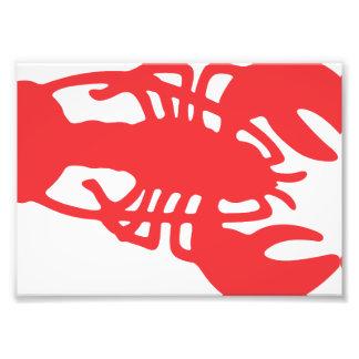 Roter Hummer Fotodruck