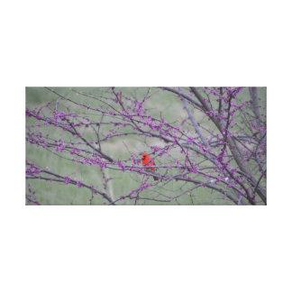 Roter Kardinal im östlichen roten Knospen-Baum Leinwanddruck