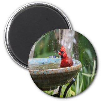 roter Kardinal Runder Magnet 5,1 Cm