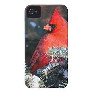 Roter Kardinals-und Immergrün-Telefon-Kasten iPhone 4 Hüllen