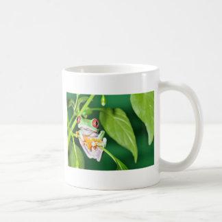 roter mit Augen Baumfrosch Kaffeetasse