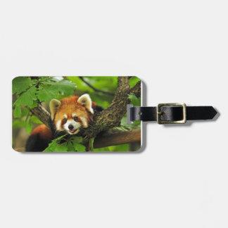 Roter Panda CUB Gepäckanhänger