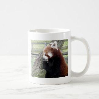 Roter Panda Kaffeetasse