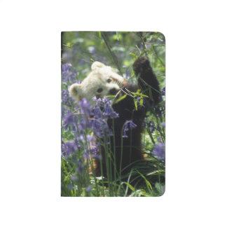 Roter Panda Taschennotizbuch
