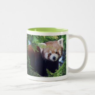 Roter Panda-Tasse Zweifarbige Tasse