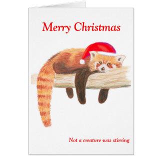 Roter Panda-Weihnachtskarte Karte