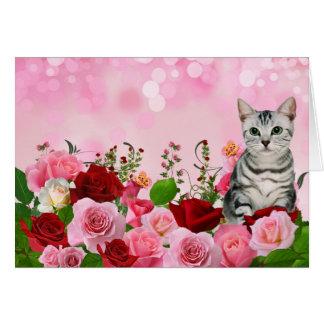 Roter und rosa Rosen-Garten mit Karte
