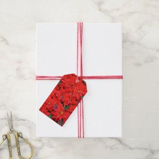 Roter Weihnachtsfeiertags-BlumenFoto der Geschenkanhänger