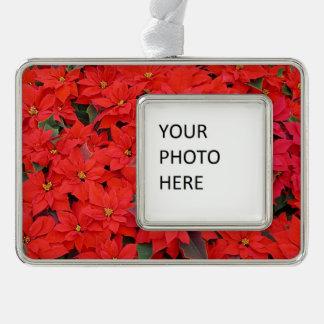 Roter Weihnachtsfeiertags-BlumenFoto der Rahmen-Ornament Silber