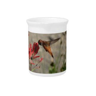 Roter Wildblumekolibri Getränke Pitcher