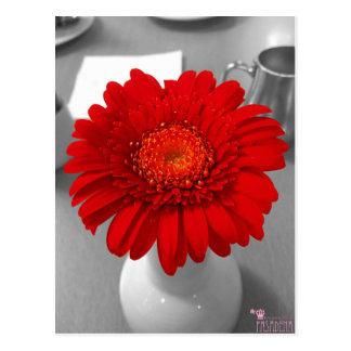 Rotes Blumen-Foto-Farbspritzen Postkarte