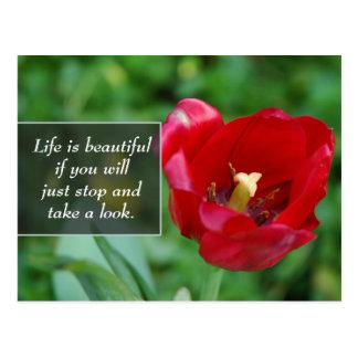 Rotes Blumen-Foto mit einem Zitat auf dem Leben Postkarte