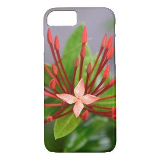 Rotes Blumen-Panama iPhone 8/7, kaum dort Fall iPhone 8/7 Hülle