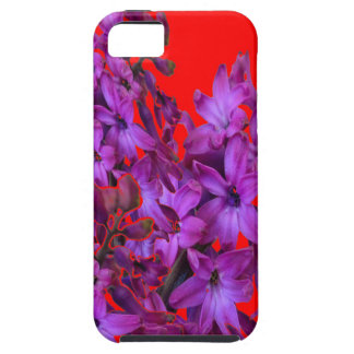 ROTES Blumengeschenk der Amethyst lila Hyazinthe iPhone 5 Schutzhülle