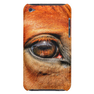 Rotes Dun-Augen-pferdeartiges Foto für iPod Touch Hüllen