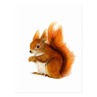 Rotes Eichhörnchen gemalt in der Postkarte