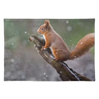 Rotes Eichhörnchen in Schottland Tischset