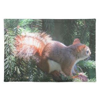 Rotes Eichhörnchen Stofftischset