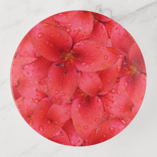 Rotes Garten-Lilien-Foto Dekoschale