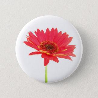 Rotes Gerbera-Gänseblümchen-Blumenknopf Runder Button 5,1 Cm