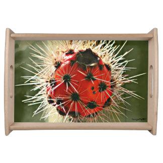 Rotes Kaktus-Birnen-Serviertablett Tablett