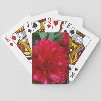 Rotes Pfingstrosen-Foto-klassische Spielkarten