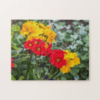 Rotes und gelbes Primel-Fotopuzzlespiel Puzzle