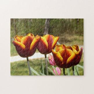 Rotes und gelbes Tulpe-Foto-Puzzlespiel Puzzle