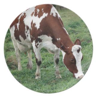 Rotes und weißes weiden lassendes Holstein Teller