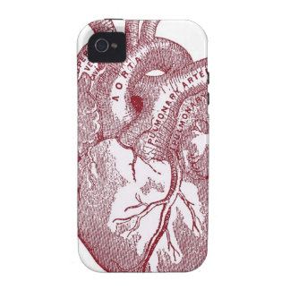 Rotes Vintages anatomisches Herz iPhone 4/4S Cover