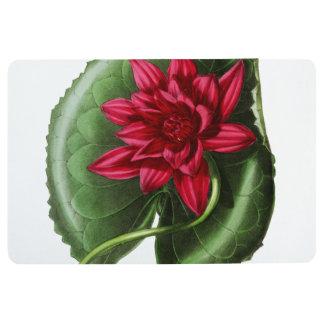 Rotes Wasser-Lilie Bodenmatte