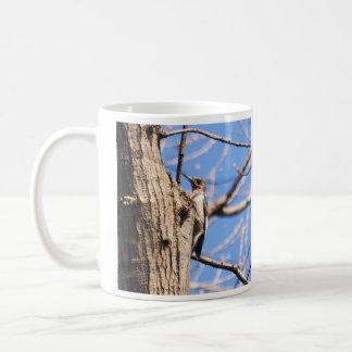 Rothaariger Specht Kaffeetasse