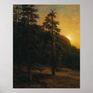 Rotholz-Bäume durch Albert Bierstadt Poster