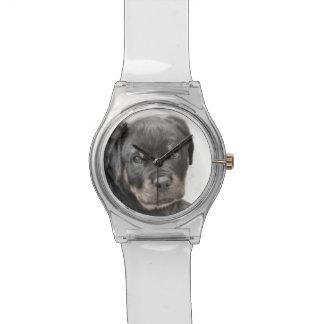 Rottweiler Hund Armbanduhr