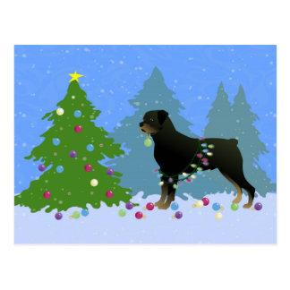 Rottweiler im Weihnachtswald Postkarte