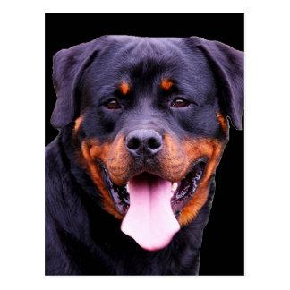 """Rottweiler "" Postkarte"