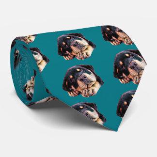 Rottweiler Welpen-Liebe Rott Hundehunde- deutsche Krawatte