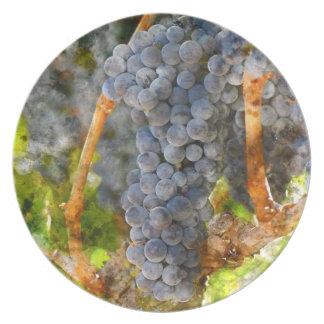 Rotwein-Trauben auf Rebe Melaminteller