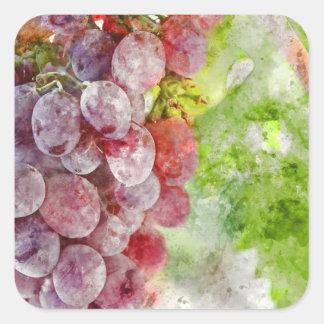 Rotwein-Trauben auf Rebe Quadratischer Aufkleber