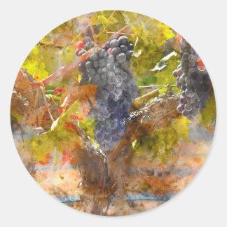 Rotwein-Trauben auf Rebe Runder Aufkleber