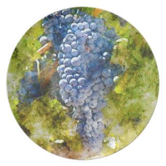 Rotwein-Trauben auf Rebe Teller