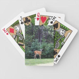 Rotwild Bicycle Spielkarten