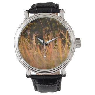 Rotwild-Damhirschkuh, die durch Blätter in der Armbanduhr