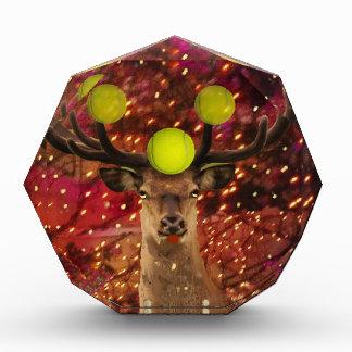 Rotwild mit Tennisbällen in einem glänzenden Wald. Auszeichnung